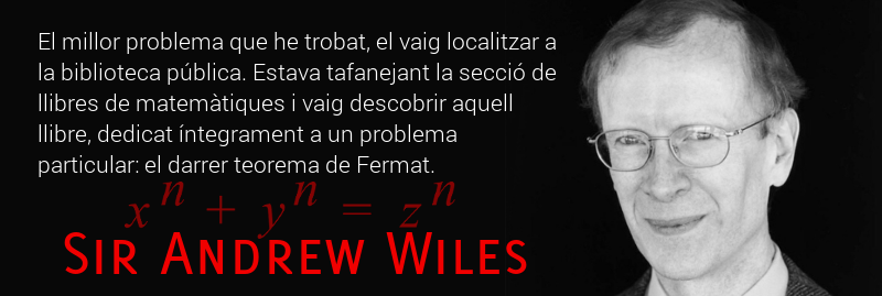 Aforismes: Sir Andrew Wiles