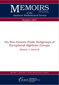 On non-generic finite subgroups of exceptional algebraic groups