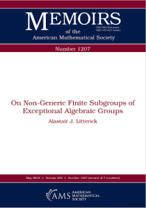 On non-generic finite subgroups of exceptional algebraic groups