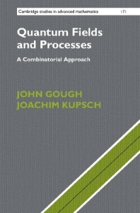 Quantum fields and processes : a combinatorial approach
