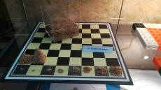 67 El tablero de ajedrez