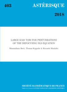 Kam tori for perturbations of the defocusing nls equation
