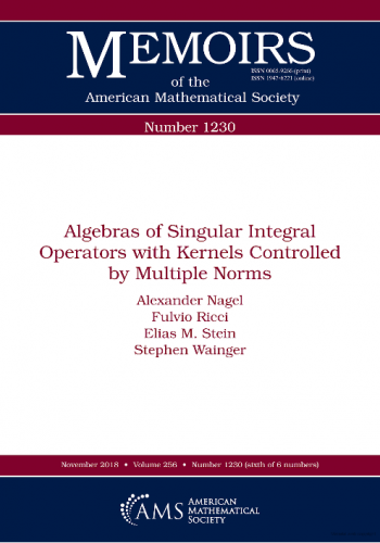 Algebras of Singular Integral Operators with Kernels Controlled by Multiple Norms