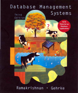 Database Management Systems 3rd Edition