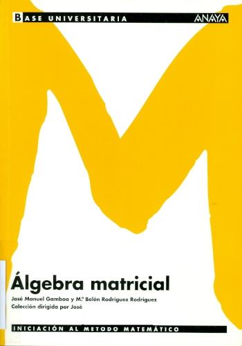 Álgebra matricial